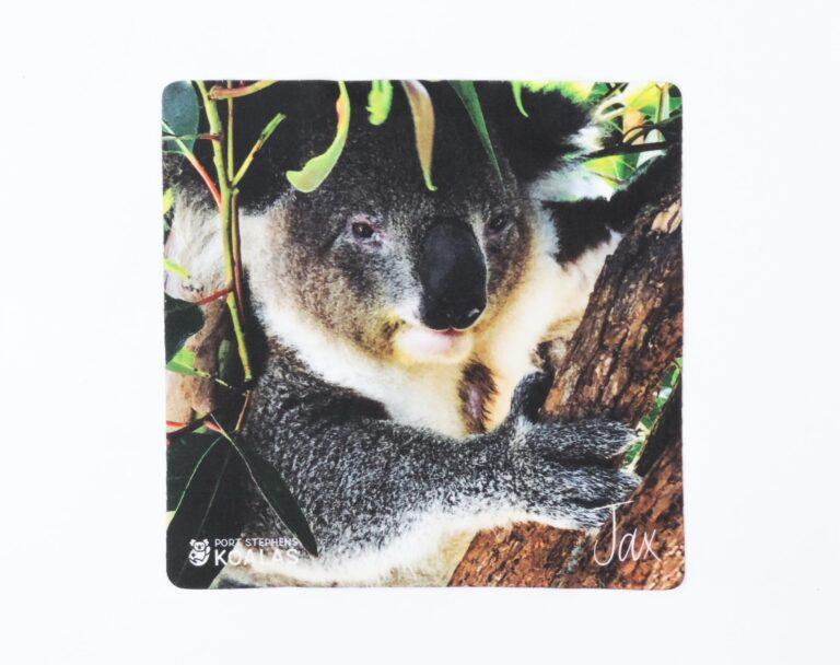 Lens cloth - 'Galloping Jax' - Port Stephens Koala Sanctuary - Port Stephens Koalas